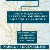 """Corso di aggiornamento """"La Patologia Aneurismatica dalla Teoria alla Pratica"""""""
