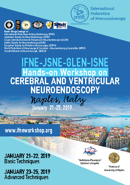 IFNE-JSNE-GLEN-ISNE Hands-on Workshop on CEREBRAL AND VENTRICULAR NEUROENDOSCOPY