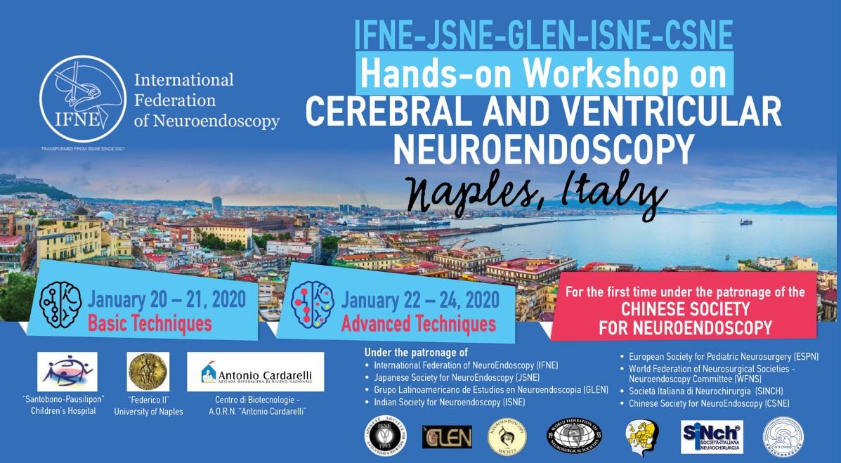 IFNE-JSNE-GLEN-ISNE-CSNE Hands-on Workshop on Cerebral and Ventricular Neuroendoscopy